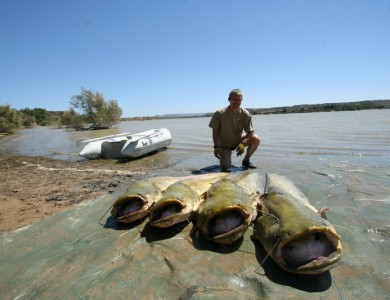 Fishing On The Ebro – Prices and Condtions For Fishing – Team Idella