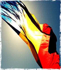 Ziua naţională petrecută cu lanseta în mână