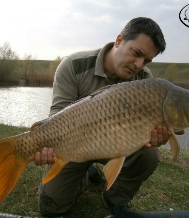 Romania, Cornesti – 12 kg