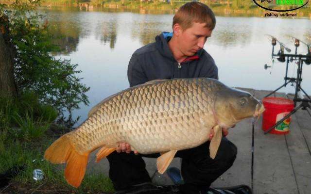Serbia, Palic – 18 kg