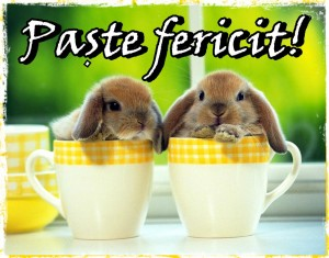 paste-fericit-happy_easter_team_idella