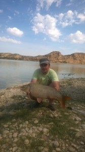 Crap prins la pescuit pe Ebro