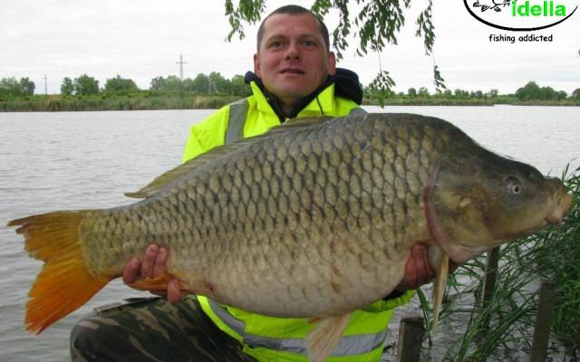 Hungary, Nagykallo – 17 kg