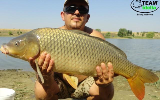 Romania, Cetariu – 8 kg