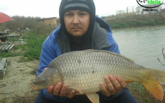 Romania, Pescaria Ciacova – 4 kg