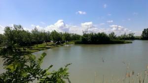 lacul_debeljaca_jezero