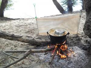 Mancare gatita la pescuit pe Dunare